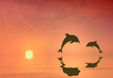 Silhouette of two dolphins jumping photo