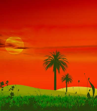 Tropical sunset Illustration  illustration