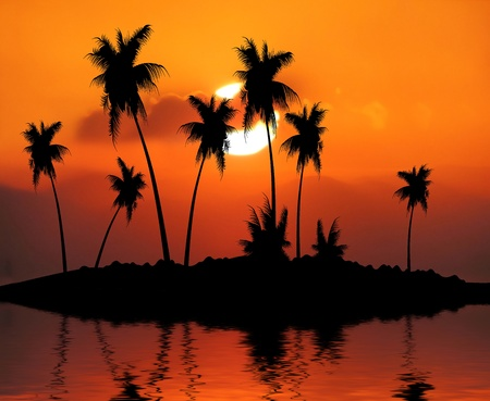 Tropical Island Sunset Illustration illustration