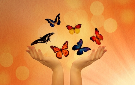 releasing: Colorful butterflies  hands