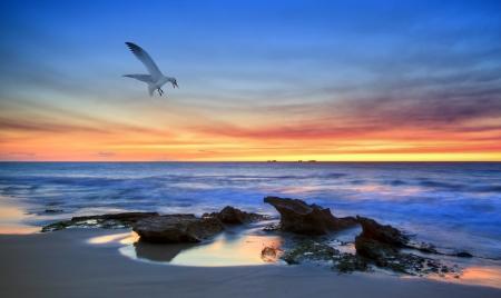 Australian Coastline  photo