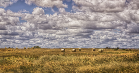 Australian countryside landscape with hay bails Stockfoto