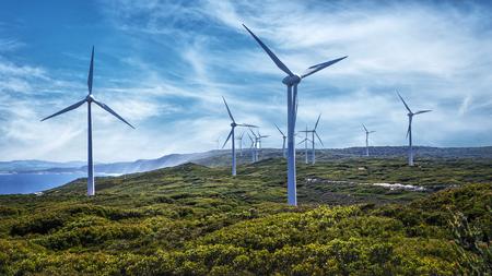 Turbiny wiatrowe na farmie wiatrowej Albany w Australii Zachodniej Zdjęcie Seryjne