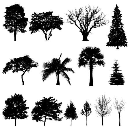 enebro: colección de siluetas de árboles Vectores