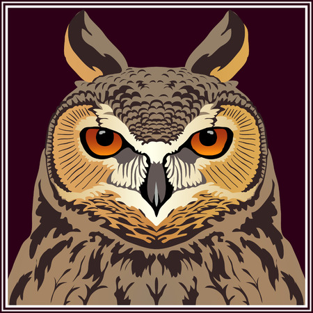 Stock vector. Head of an owl (Long-eared owl). Totem, tattoo design for t-shirt, logo, bag, postcard, poster, illustration and so on. Çizim