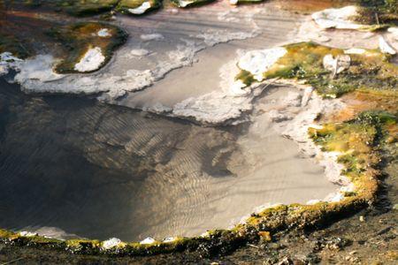 bubbling: Bubbling Hot Spring - South Island, New Zealand