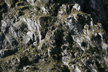 franz: Franz Josef Glacier, New Zealand Stock Photo