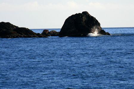 coast line: Milford Sound, Te Wahipounamu, New Zealand