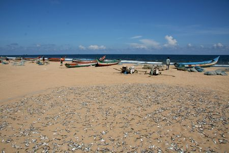 Marina Beach, Chennai, India, Asia photo