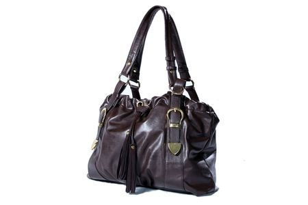 High Class Womens Leather Hand Bag / Purse Stock Photo - 5750592