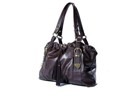 High Class Womens Leather Hand Bag / Purse Stock Photo - 5750592