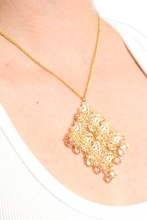 High Class Womens Expensive Necklace photo