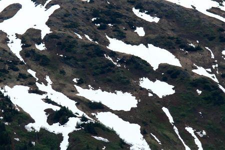 Mt Roberts in the capital city Juneau of Alaska, USA photo