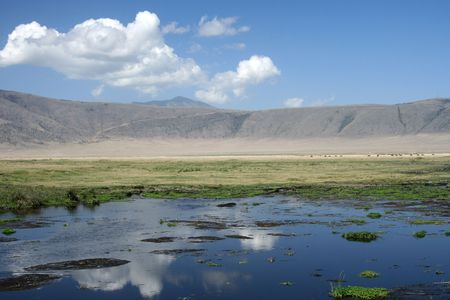 Ngorongoro Crater, Nature Reserve in Tanzania, East Africa photo