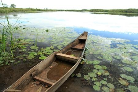 Peaceful River Setting - Agu River in Uganda - The Pearl of Africa photo