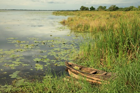 freshwater pearl: Peaceful River Setting - Agu River in Uganda - The Pearl of Africa
