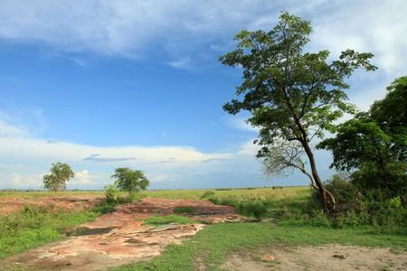 Lake Anapa in Uganda - The Pearl of Africa photo