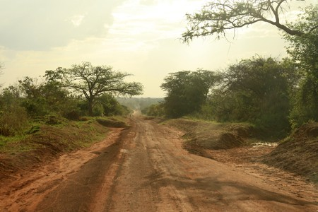 muddy tracks: Small Rural Village in Uganda - The Pearl of Africa Stock Photo