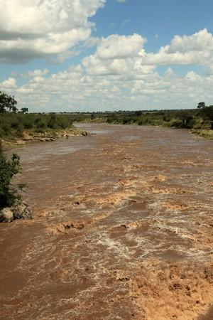 maasai mara: Mara River  - Maasai Mara National Park in Kenya, Africa