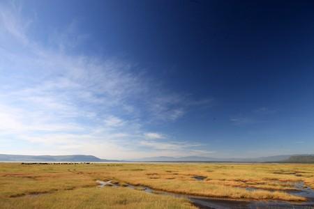 nukuru: Lake Nukuru National Park in Kenya, Africa Stock Photo