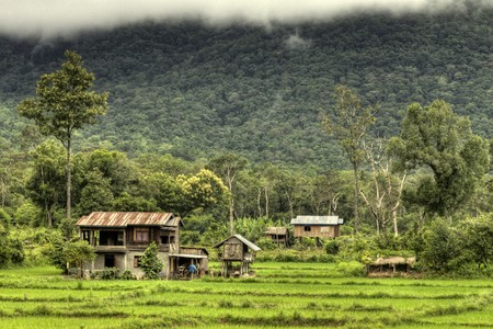 plateau: Rice Fields at Bolaven Plateau in Southern Laos Stock Photo