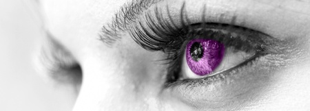 Purple Eye - Beautiful, Feminine photo