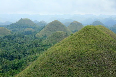 bohol: Chocolate Mountains in Bohol Island on the West of Philippines in Asia