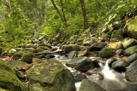 taman: National Park on Penang Island, Malaysia
