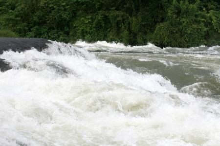 white nile: Nile River - Bujagali Falls + River en Uganda - la Perla de �frica