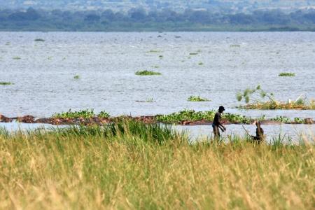 The River Nile at Murchison Falls National Park Safari Reserve in Uganda - The Pearl of Africa photo