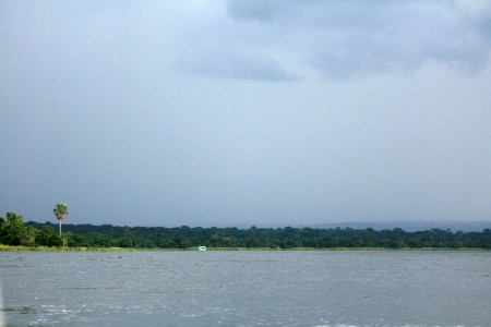 The River Nile, Murchison Falls National Park Safari Reserve in Uganda - The Pearl of Africa photo