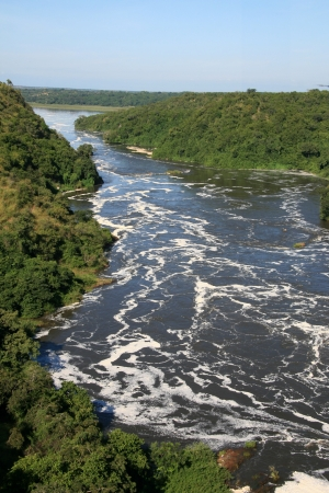 freshwater pearl: The River Nile, Murchison Falls National Park Safari Reserve in Uganda - The Pearl of Africa