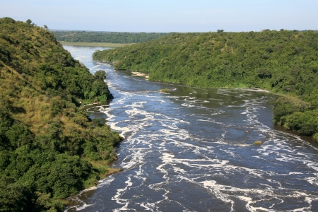 white nile: The River Nile, Murchison Falls National Park Safari Reserve in Uganda - The Pearl of Africa