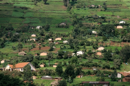 kisoro: Kisoro District in Uganda - The Pearl of Africa
