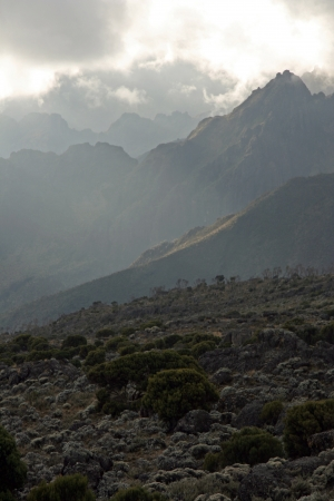 kilimanjaro: Rugged Landscape at Mt Kilimanjaro in Tanzania, Africa Stock Photo