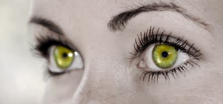 Beautiful Yellow Feminine Eye Closeup of a Woman
