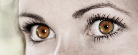 Beautiful Hazel Feminine Eye Closeup of a Woman photo