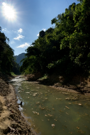 River at Khao Sok National Park, Thailand photo