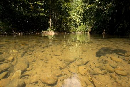 Khao Sok National Park, Thailand Stock Photo - 18647485
