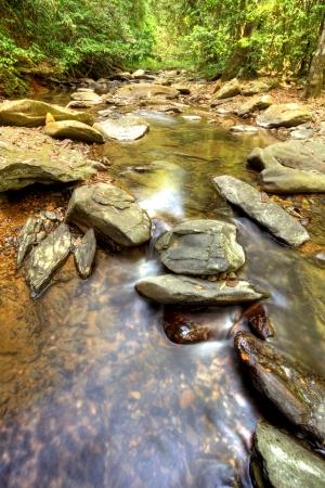 Fresh Water at Khao Sok National Park, Thailand Stock Photo - 18647496