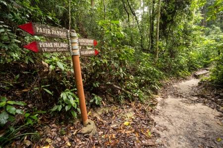 National Park in Penang, Malaysia Stock Photo - 19192627