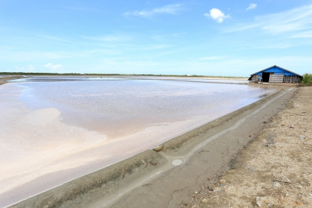 Salt Farm in Phetchaburi Province, Thailand photo