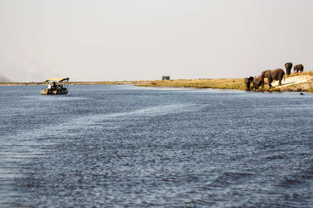 chobe national park: Boat in Chobe River, Chobe National Park, Botswana, Africa Stock Photo