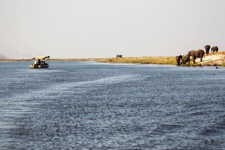 chobe: Boat in Chobe River, Chobe National Park, Botswana, Africa Stock Photo