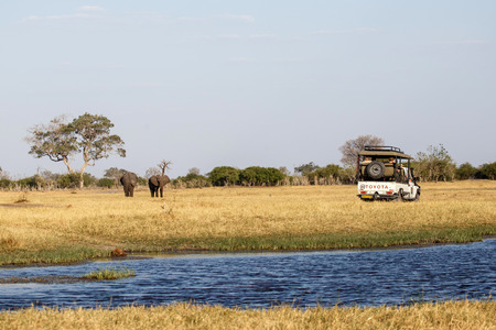 chobe: Chobe National Park, Botswana, Africa Editorial