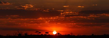 paisagem: Pôr do sol sobre o Parque Nacional de Chobe, Botswana, África