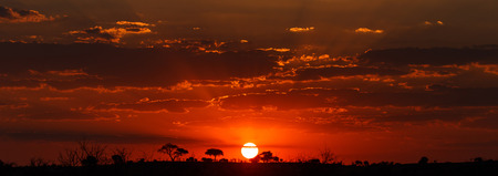 chobe national park: Sunset Over The Chobe National Park, Botswana, Africa Stock Photo