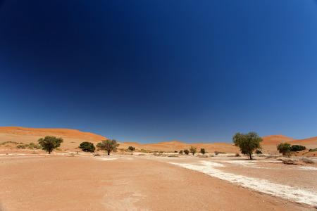 vlei: Sossusvlei in the Namib Desert, Namibia, Africa