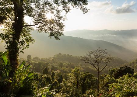 fa: Land Before Time Landscape at Phu Chi Fa, North Thailand