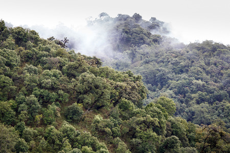 western state: Mountain Range Landscape in Chin State, Western Myanmar (Burma)
